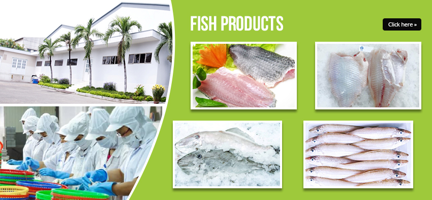 EXPORTING MANY KIND OF FISH - FISH PRODUCTS